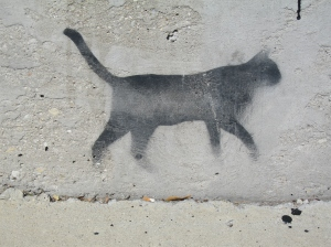 cat graffiti